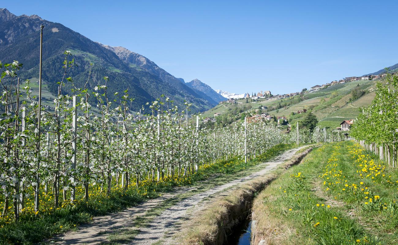 Maiser Waalweg in Meran und Passeiertal